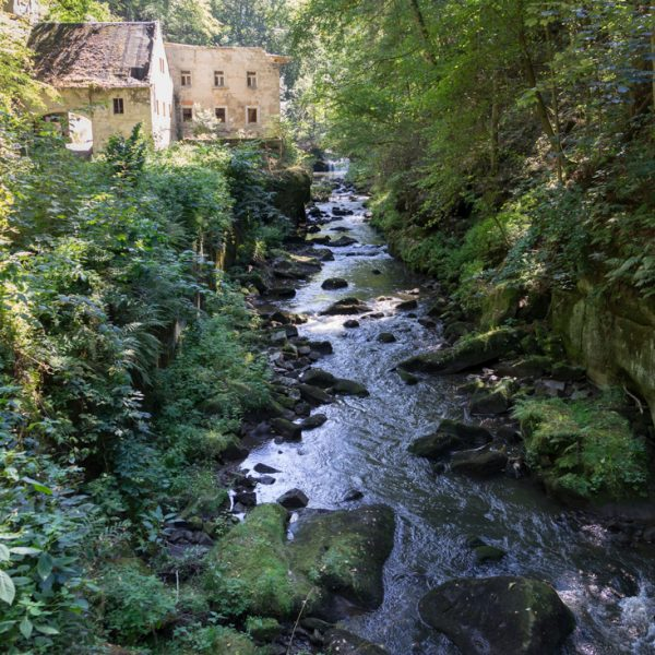 Blick auf die Wesenitz und die Ruine der Lochmühle im Liebethaler Grund