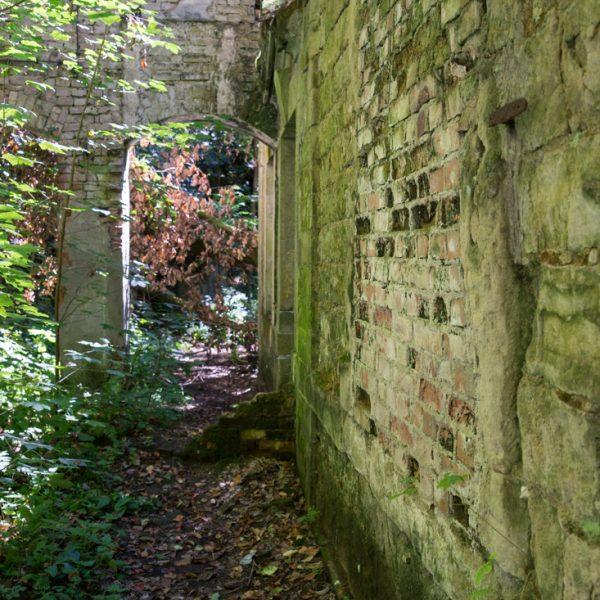 Detailaufnahme in der Ruine des E-Werkes Copitz