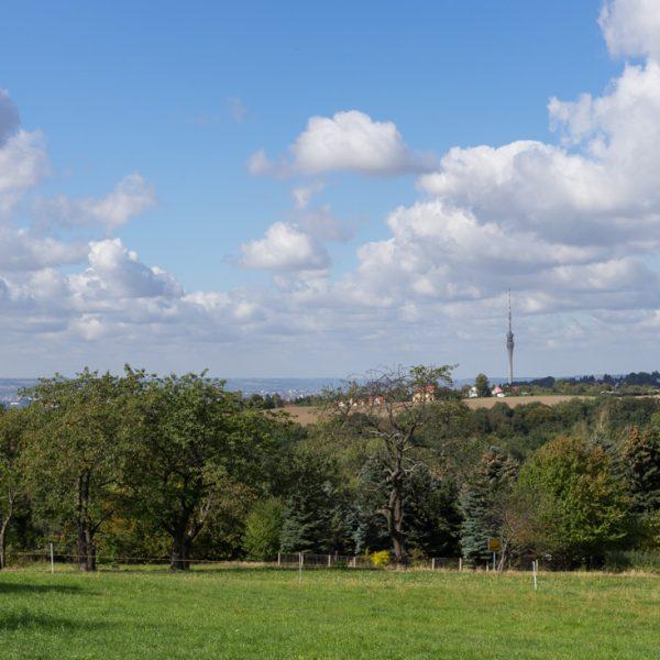an der Malschendorfer Höhe mit Blick zum Fernsehturm, Schönfelder Hochland