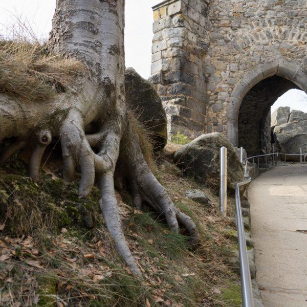 Burgtor, Eingang zur Burg Oybin