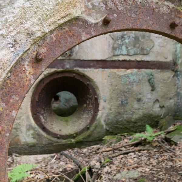 Ruine neben dem Haus Sternkopf im Polenztal