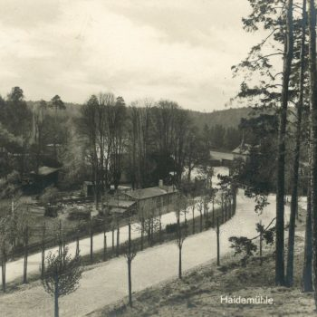 Blick aus dem Wald auf die Heidemühle