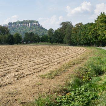 Wanderweg zum Quirl, im Hintergrund der Sportplatz und die Festung Königstein