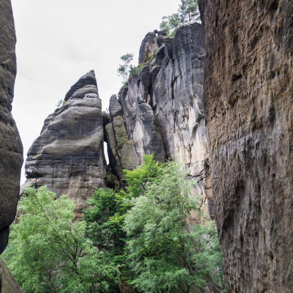 Blick von der Rübezahlstiege auf das Schwarze Horn im Heringsgrund