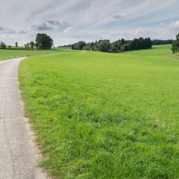 Radweg und Felder bei Großerkmannsdorf