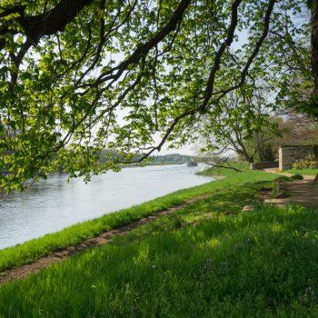 Zwischenstopp am Schloßpark in Pillnitz, Blick auf die Elbe