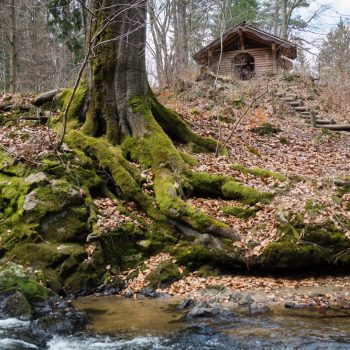 Uferbereich und Schutzhütte am Prießnitzwasserfall, Dresdner Heide