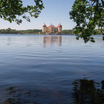 Schloss Moritzburg und seine Spiegelung im Schlossteich