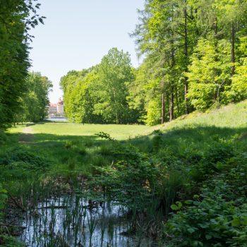 auf der Sichtachse zwischen Schloss Moritzburg und dem Fasanenschlösschen