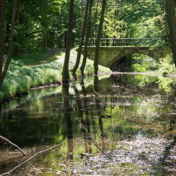 im Friedewald, am Kanal bei Schloss Moritzburg