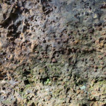 kugelförmige Sandstein-Struktur am Pudelstein, Brauneisenstein
