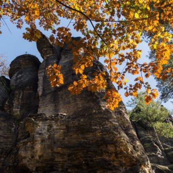 Felsen und Herbstlaub beim Aufsteig zum Kleinen Bärenstein