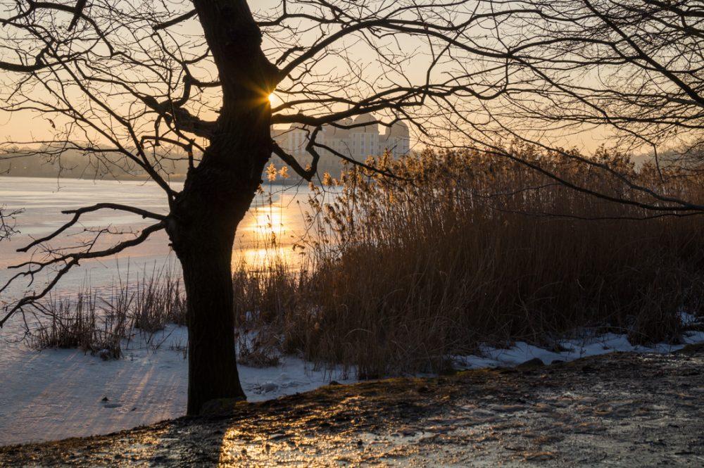 Abendlicht im Schlosspark von Moritzburg, Sonnenuntergang im Winter