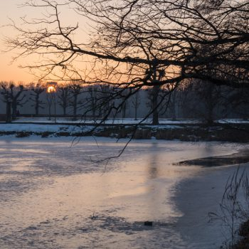 Kurz vor dem Sonnenuntergang, Schlosspark Moritzburg