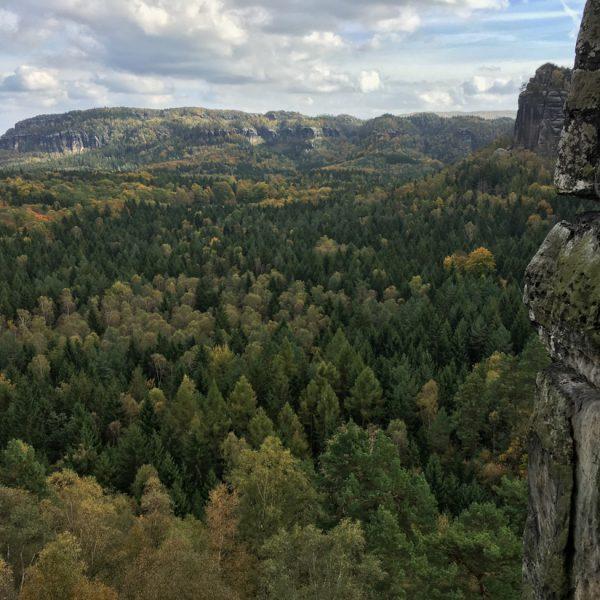 Ausblick vom Falkenstein in Richtung Affensteine