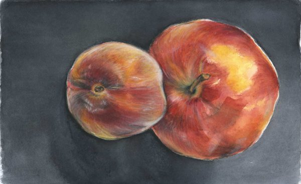 Apfel und Pfirsich | Stillleben | Aquarellfarbe auf Papier | 250x 160 mm | 2011
