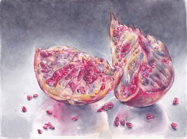 Granatapfel | Stillleben | Aquarellfarbe auf Papier | 400 x 300 mm | 2012