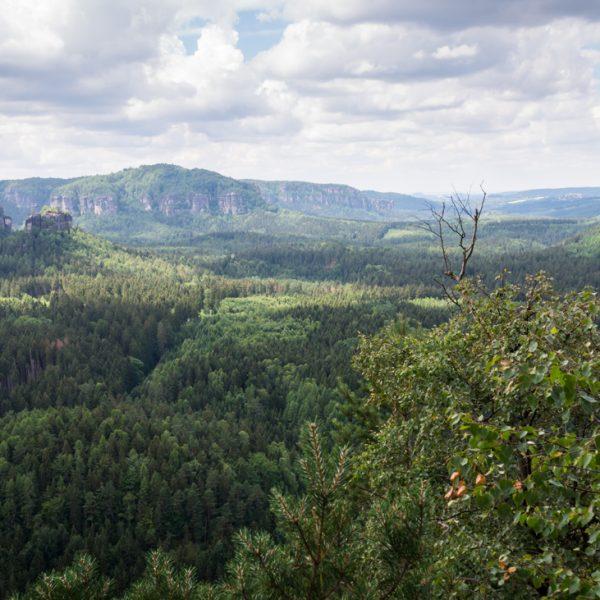 Aussicht vom Teichstein in Richtung Winterstein, Affensteine und Lorenzsteine