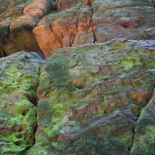 farbig leuchtende Feslen im Uttewalder Grund