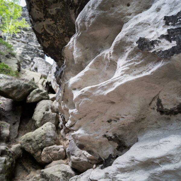 Felsen und Aufstieg am Höhenweg zu den Honigsteinen
