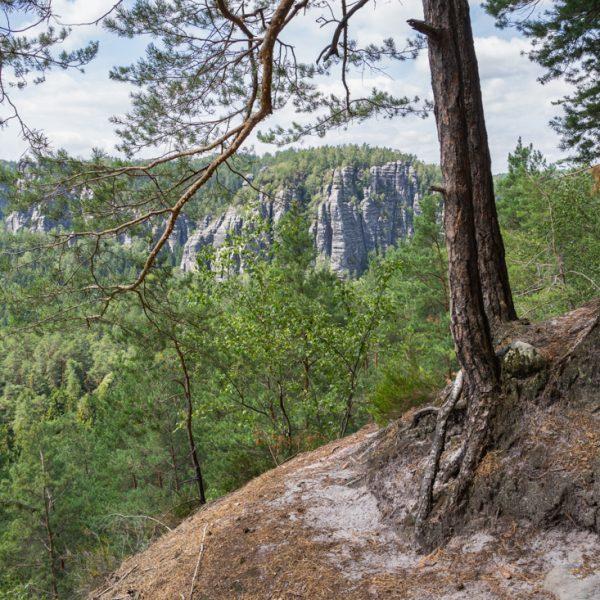 Höhenweg Honigsteine, schmales Band