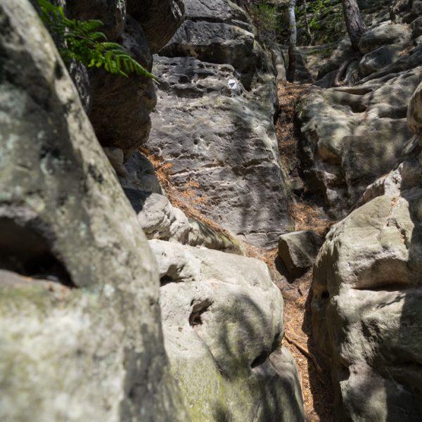 letztes Stück des Aufstieges, Höhenweg Honigsteine