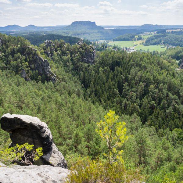 Ausblick am Fuße des Kletterfelsen Lamm in Richtung Lilienstein