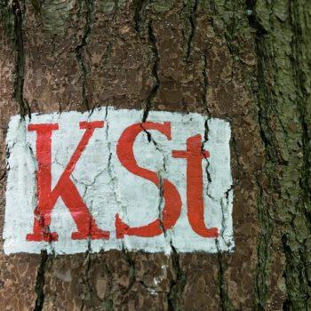 Kellersteig, historisches Wegzeichen in der Dresdner Heide