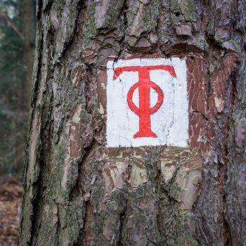 Hämmerchen, historisches Wegzeichen in der Dresdner Heide