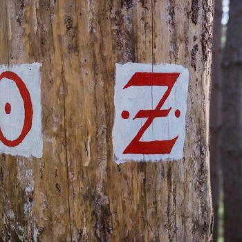 Todweg (links) und Rennsteig (rechts), historische Wegzeichen
