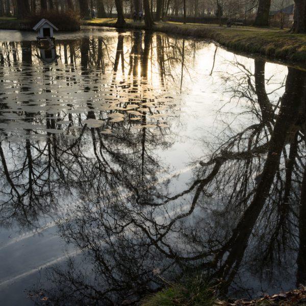 Englischer Garten im Schlosspark Moritzburg, Spiegelung im Abendlicht