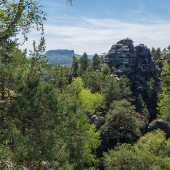 Ausblick in Richtung Lilienstein (im Hintergrund)