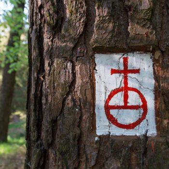 historisches Wegzeichen Reichsapfel, Wanderweg Dresdner Heide