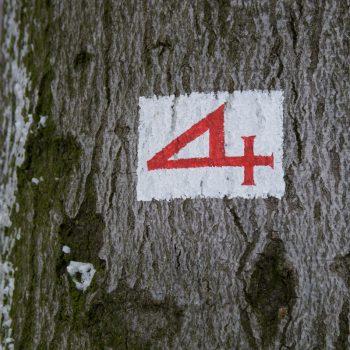 Alte Vier oder Stallweg, Wegzeichen Dresdner Heide