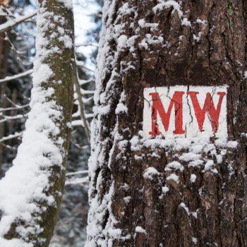 Mittelweg, Wegzeichen Dresdner Heide