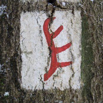 Hirschstängel, Wegzeichen Dresdner Heide