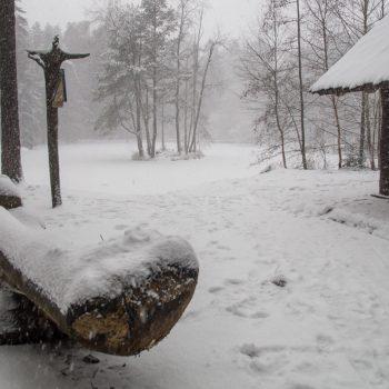 Schneebedeckter Stausee, Dresdner Heide