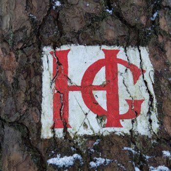 HG-Weg, Wegzeichen Dresdner Heide