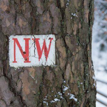 Neuer Weg, Wegzeichen Dresdner Heide