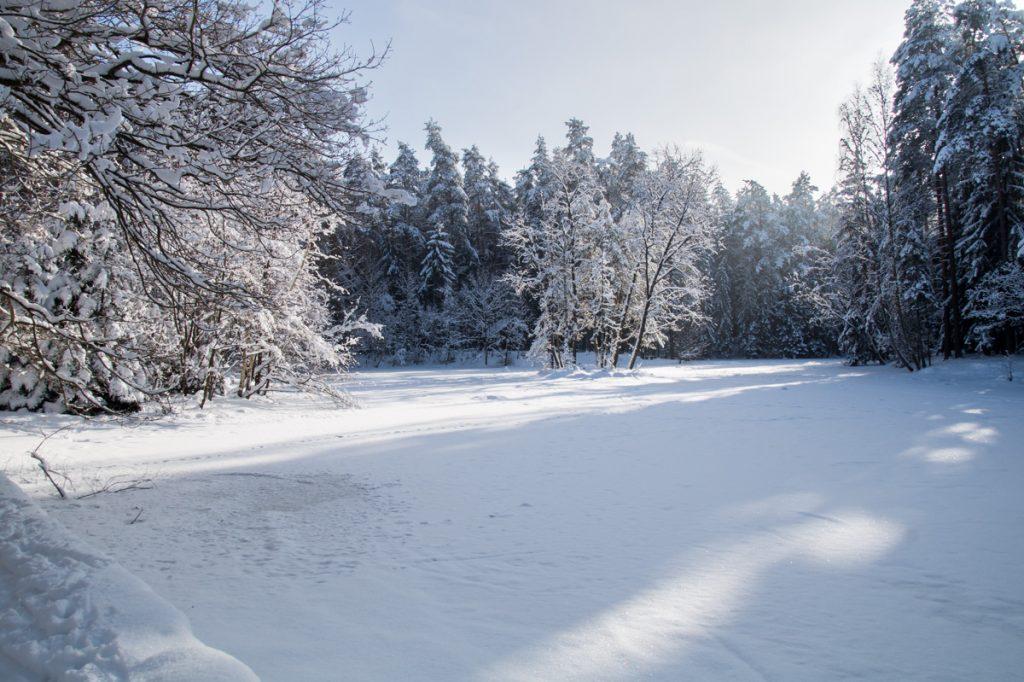 Stausee im Winter, Dresdner Heide