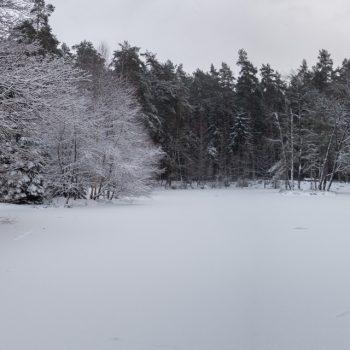 Schnee am Stausee, Dresdner Heide, Panorama