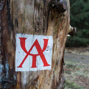 Zirkel, historisches Wegzeichen in der Dresdner Heide