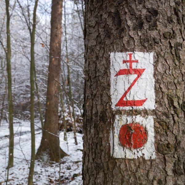 Schwesternsteig, historisches Wegzeichen in der Dresdner Heide