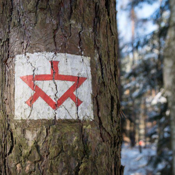 Topfweg, historisches Wegzeichen in der Dresdner Heide