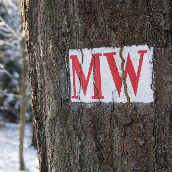Mühlweg, historisches Wegzeichen in der Dresdner Heide