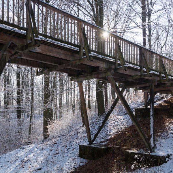 Wanderung auf dem Diebsteig, Holzbrücke am Stechgrund