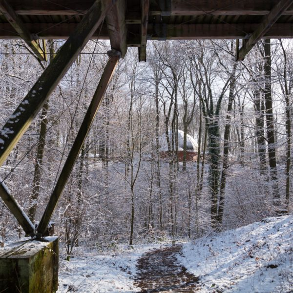 Winterspaziergang auf dem Diebsteig mit Blick auf die Konzertmuschel, Dresdner Heide